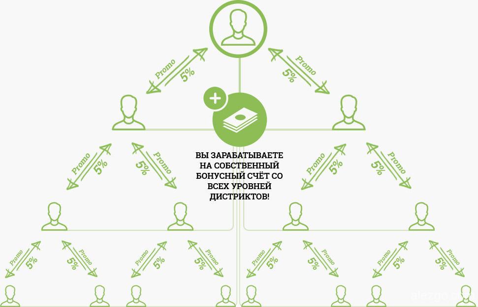 построй свою сеть, бизнес
