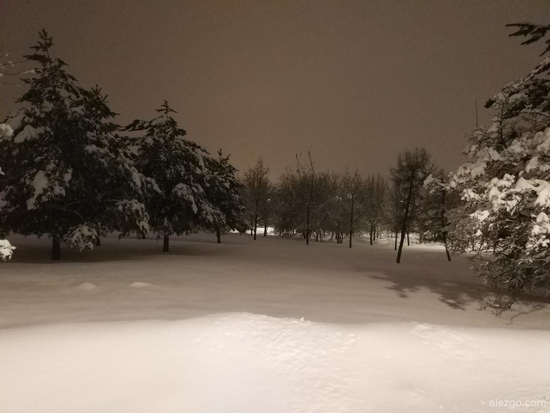 парк садовники зимой