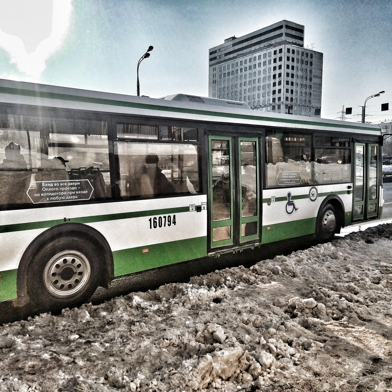 автобусы в москве